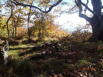 Fall-2-2011-050.jpg