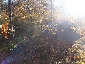 Fall-3-2011-004.jpg