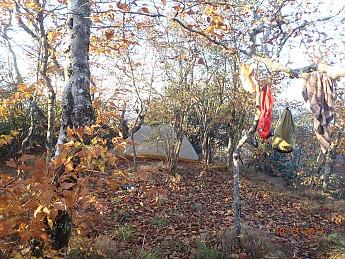 Fall-3-2011-017.jpg
