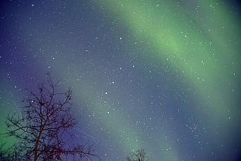 AuroraLvls99.jpg