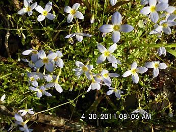 Spring-Trip-2-042.jpg