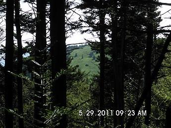 Summer-Trip-1-064.jpg
