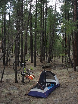 Camps-at-Shultz-Creek-Canyon-TH-025.jpg