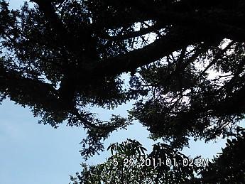 Summer-Trip-1-125.jpg