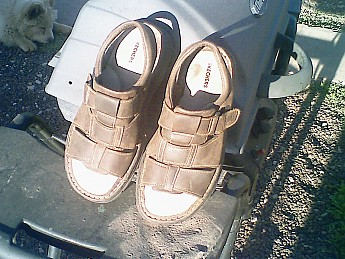 Skechers-size-13-sandals.jpg