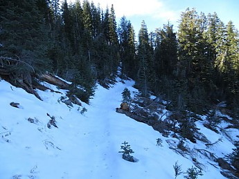 Nelson-Creek-11-9-2013-003_opt.jpg