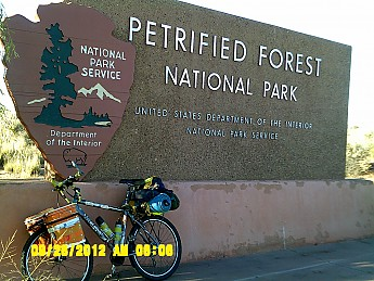 Petrified-Forest-Nat-Park.jpg