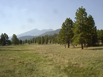 Flagstaff-az-May-2012-278.jpg