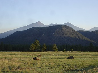 Flagstaff-az-May-2012-284.jpg