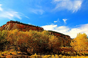IMG_0841-Fall-colors-in-Parunuweap-Canyo