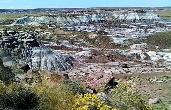 Petrified-Nat-Park-landscape-PFNP-AZ.jpg