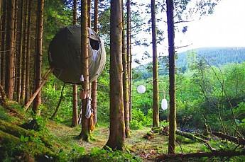tree_tents-770x510.jpg