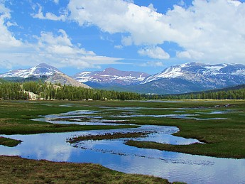 Tuolumne-River-and-Meadows.jpg