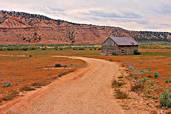 IMG_0977-Old-cabin-near-Tropic-Utah.jpg