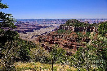 grand-canyon-north-rim-view-greg-norrell