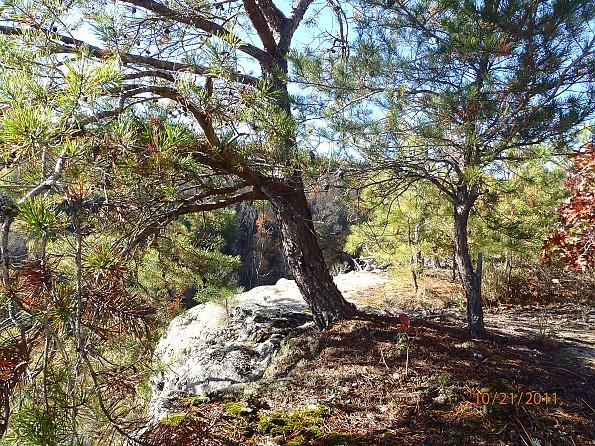 Fall-4-2011-060.jpg