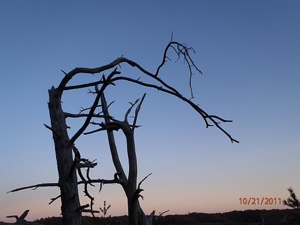 Fall-4-2011-188.jpg