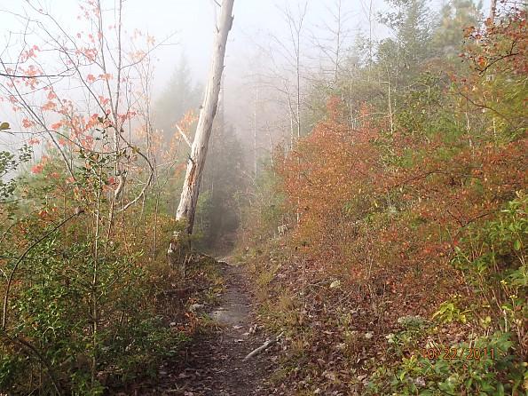 Fall-4-2011-202.jpg