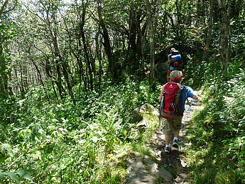 08-On-the-trail-to-Stan-Murray-Shelter.j