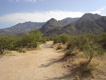 Beginning-of-trail-to-Romero-Canyon-and-