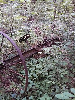 Wishing-Well-Trail-3-.jpg