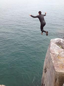 gull-jump.jpg