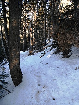 trail-25.jpg