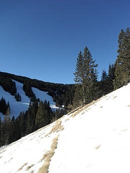 where-s-the-trail.jpg