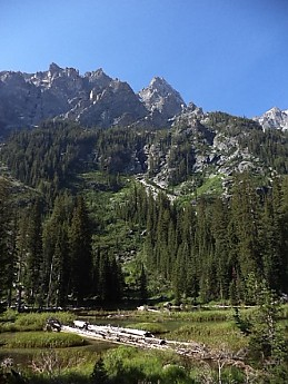 Teton-peaks-above-south-side-of-Cascade-
