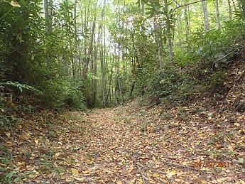 Fall-Trip-1-019.jpg