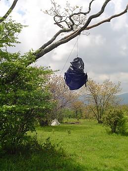 Joyce-Kilmer-Trip-2012-176.jpg