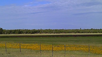 c1-Horse-Lake.jpg