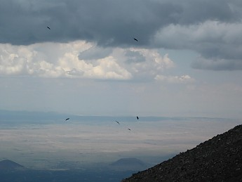 Ravens-soaring-on-updrafts-west-of-Mt-Hu