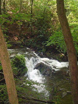 Bald-River-Gorge-2014-088.jpg