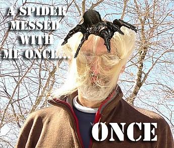 Tipi-Spider.jpg