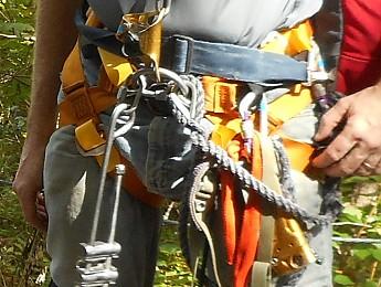 CMI-Harness.jpg