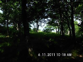Summer-Trip-2-060.jpg