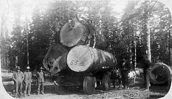 Logging-around-Flagstaff-late-1800s.jpg