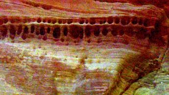 Parunuweap-canyon-13.jpg