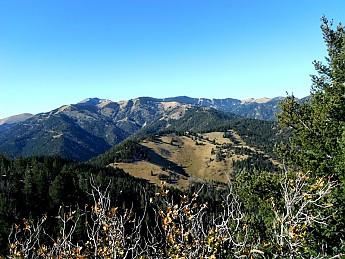 WM-Wilderness-2.jpg