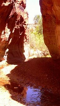 Mineral-canyon-7.jpg