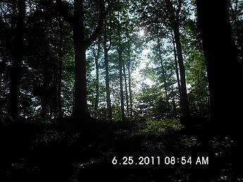 Summer-Trip-3-047.jpg