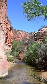 Parunuweap-canyon-7.jpg