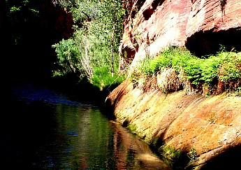 Parunuweap-canyon-9.jpg