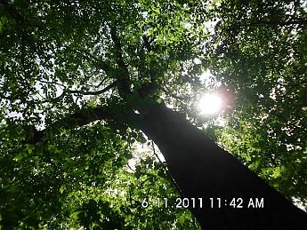 Summer-Trip-2-108.jpg