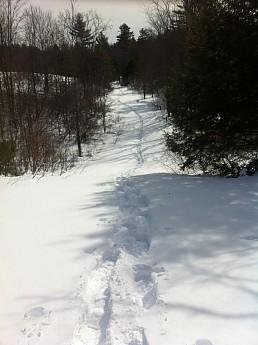 Snowshoeing_3.jpg