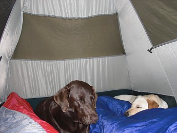 Cozy-Tent.jpg