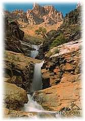 Seven-Falls-in-Bear-Canyon.jpg