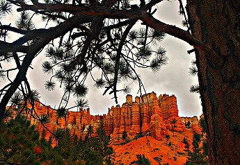 IMG_1019-Sandstone-columns-in-Red-Canyon