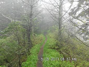 Spring-Trip-3-2011-126.jpg